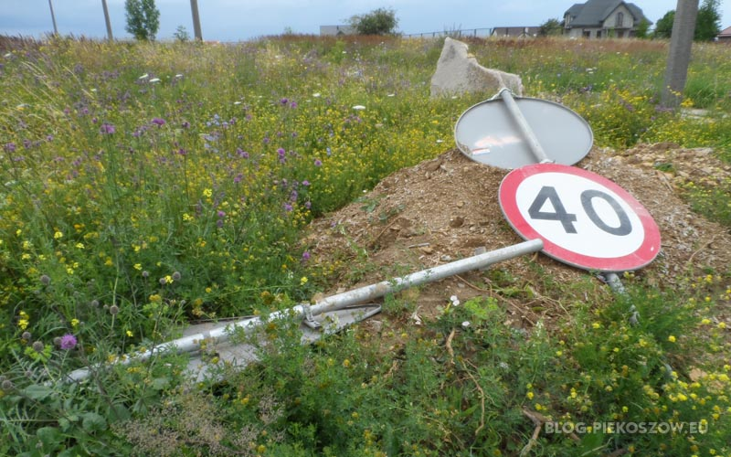 Znaki drogowe zamiast ostrzegać i informować kierowców - leżą w chaszczach